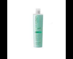 Шампунь мятный освежающий для ежедневного применения SHAMPOO REFRESHING MINT INEBRYA