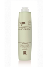 Шампунь чудоомолаживающий для волос Alter Ego Arganikare Day therapy Miracle Rejuvenating shampoo