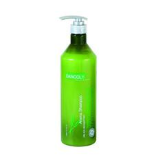 Арома-шампунь для сухих и повреждённых волос SPA Angel