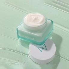 Крем для лица dixionist Cyforest Essence Infusion Cream